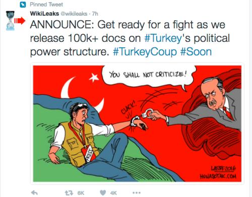 wiki-turkey2